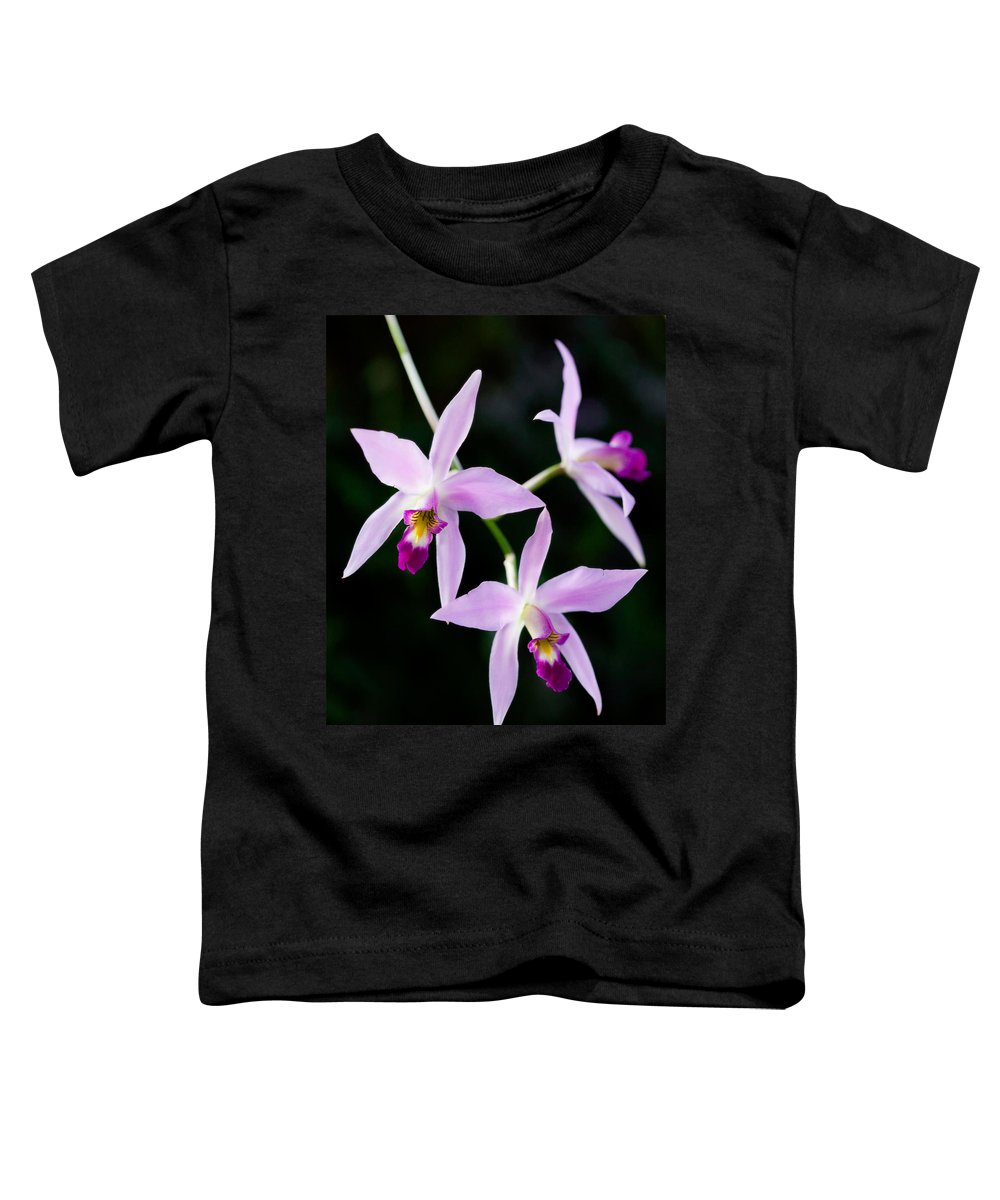 Orchid Toddler T-Shirt featuring the photograph Three Orchids by Marilyn Hunt