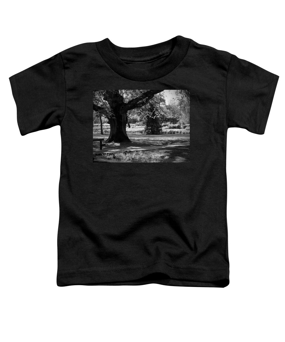 Irish Toddler T-Shirt featuring the photograph Tralee Town Park Ireland by Teresa Mucha