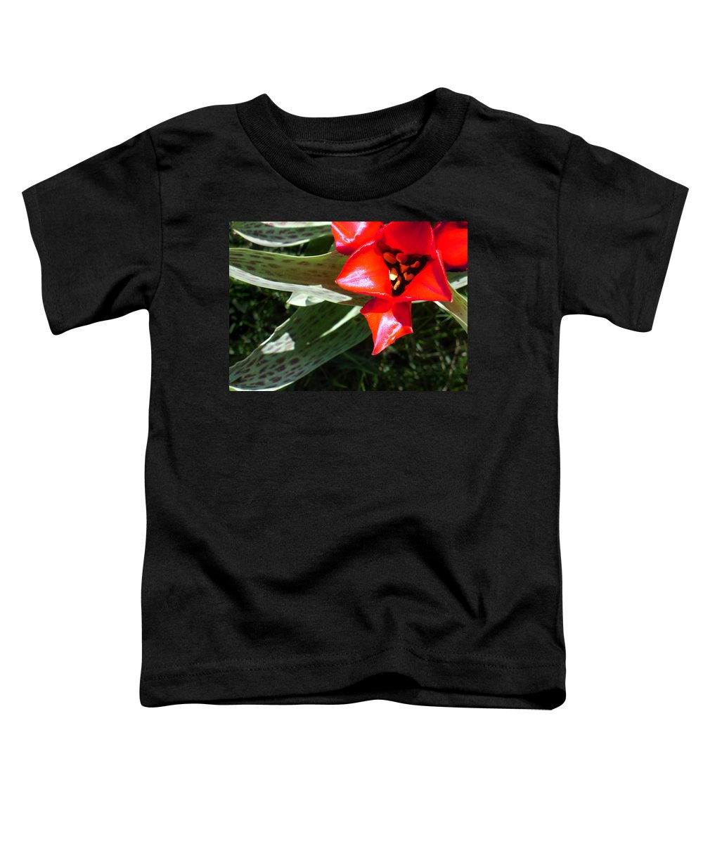 Tulip Toddler T-Shirt featuring the photograph Tulip by Steve Karol