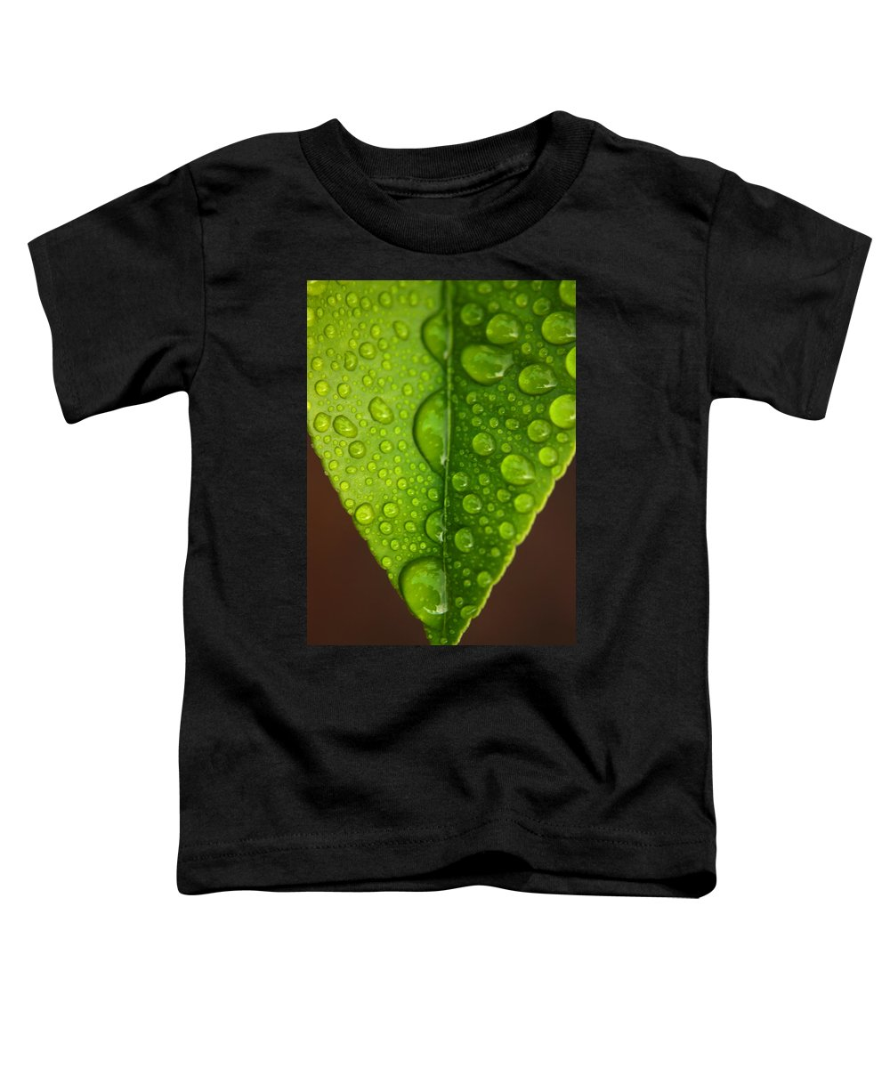 Leaf Toddler T-Shirt featuring the photograph Water Droplets On Lemon Leaf by Ralph A Ledergerber-Photography