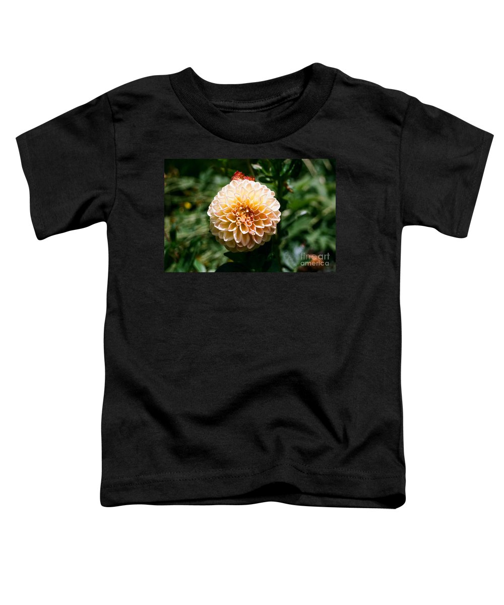 Zinnia Toddler T-Shirt featuring the photograph Zinnia by Dean Triolo