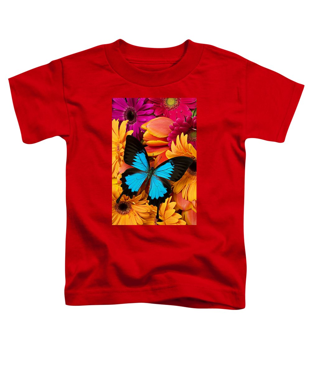 Butterfly Tulips Daisy�s Toddler T-Shirt featuring the photograph Blue Butterfly On Brightly Colored Flowers by Garry Gay