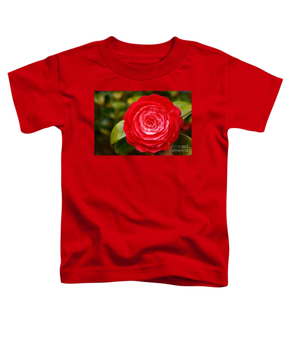 Azores Toddler T-Shirt featuring the photograph Camellia Japonica by Gaspar Avila