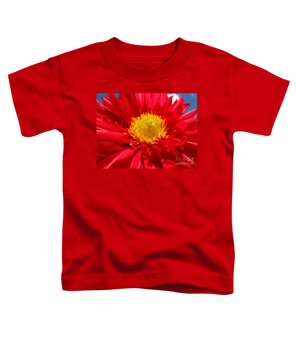 Dhalia Toddler T-Shirt featuring the photograph Dhalia by Amanda Barcon