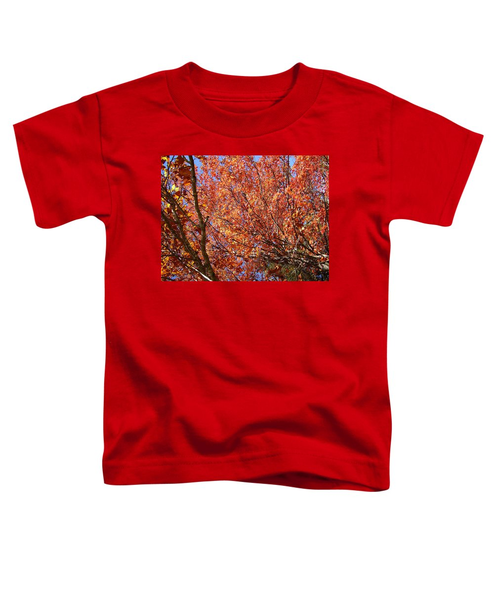 Fall Toddler T-Shirt featuring the photograph Fall In The Blue Ridge Mountains by Flavia Westerwelle