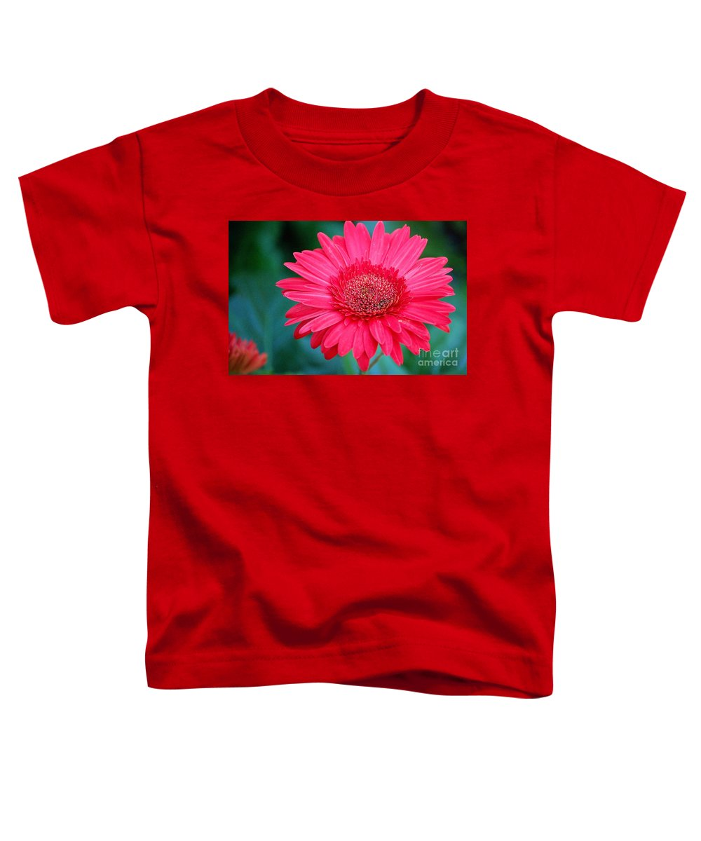 Gerber Daisy Toddler T-Shirt featuring the photograph In The Pink by Debbi Granruth