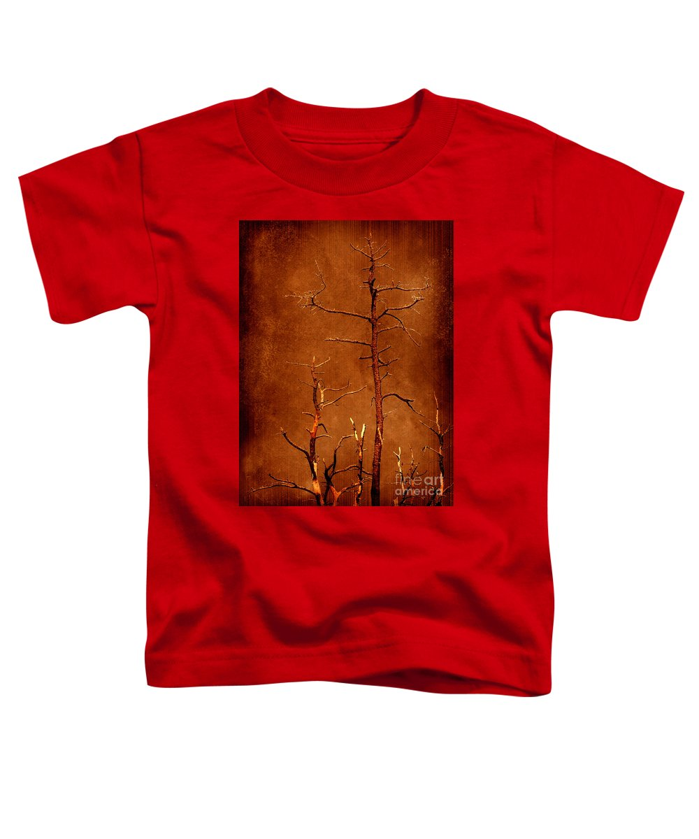 Dipasquale Toddler T-Shirt featuring the photograph Left Bare And Broken by Dana DiPasquale