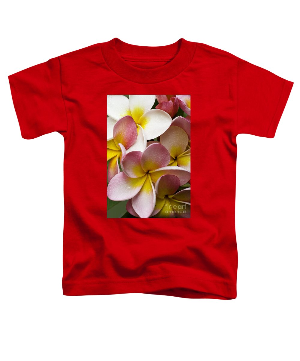 Pink Frangipani Toddler T-Shirt featuring the photograph Pink Frangipani by Sheila Smart Fine Art Photography
