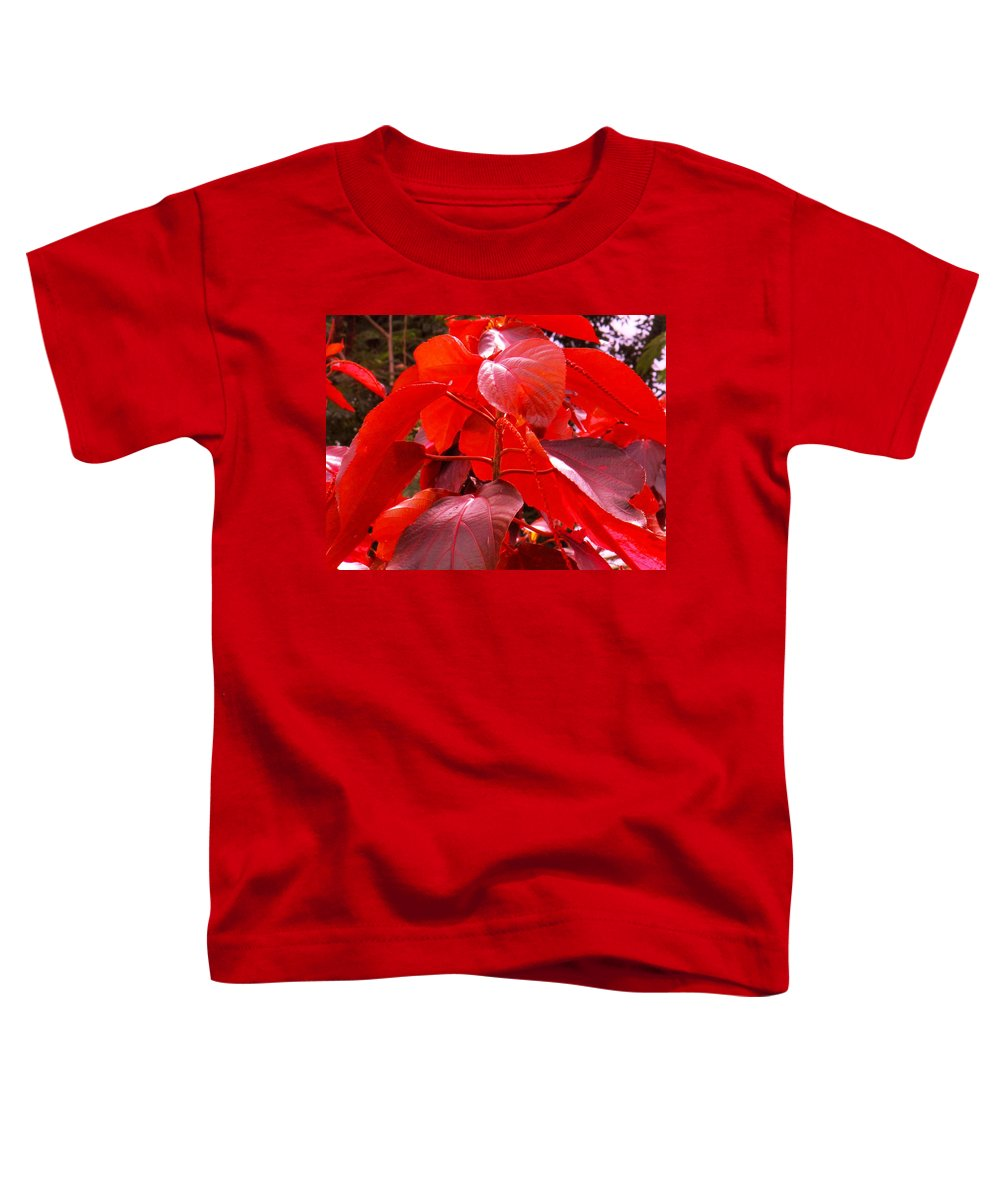 Red Toddler T-Shirt featuring the photograph Red by Ian MacDonald