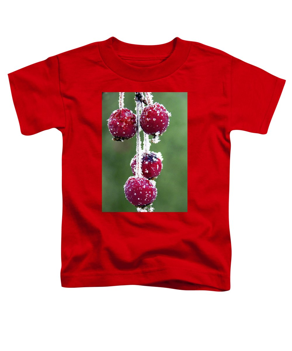 Berries Toddler T-Shirt featuring the photograph Seasonal Colors by Marilyn Hunt