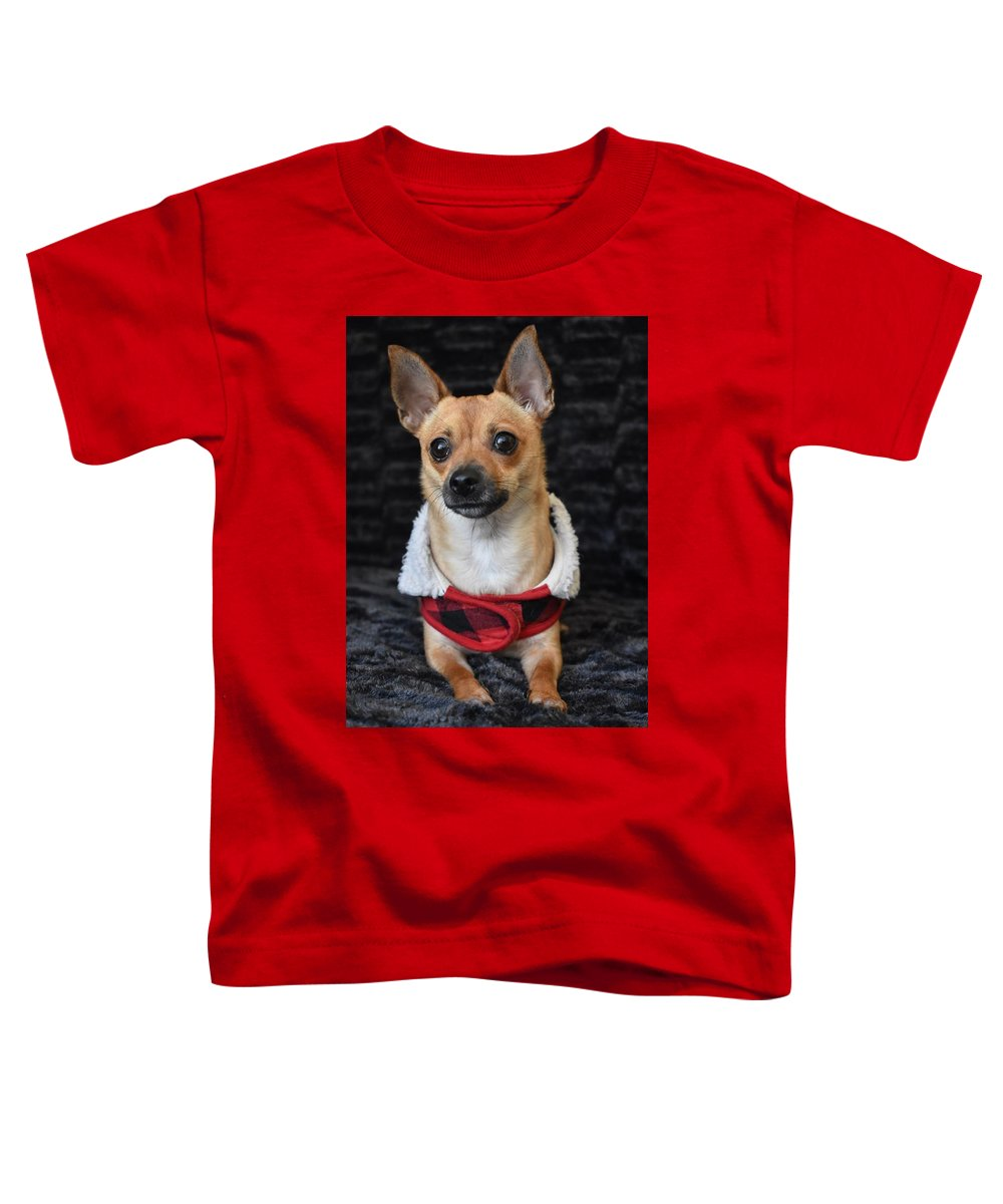 Chihuahua Toddler T-Shirts