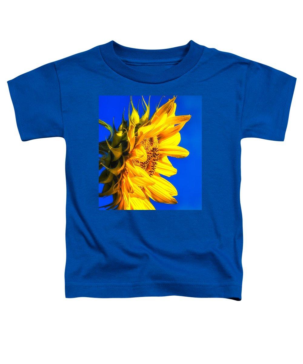 Sunflower Toddler T-Shirt featuring the photograph Blue Sky Sunshine Sunflower by Bob Orsillo