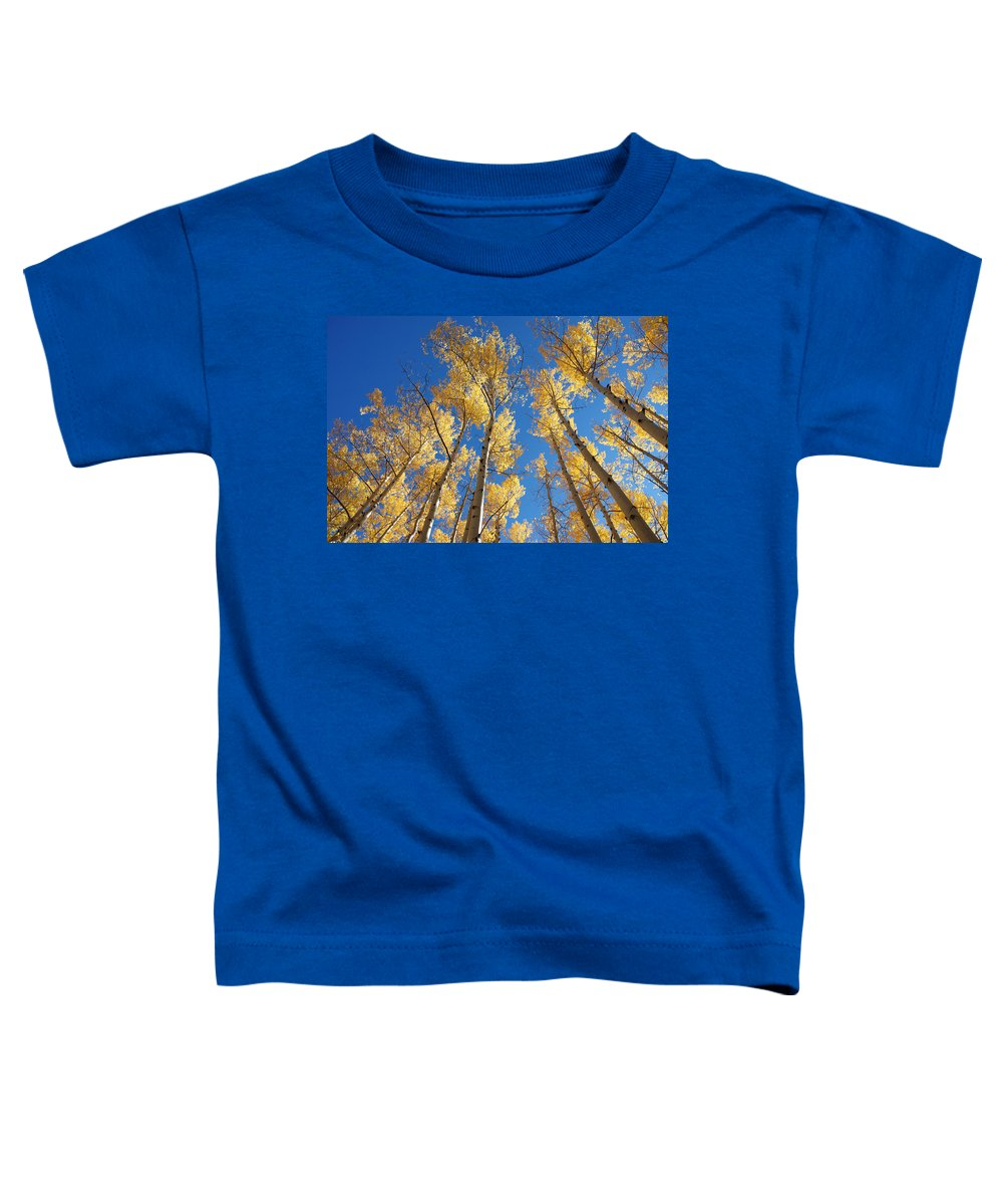 Aspen Toddler T-Shirt featuring the photograph Colorado Aspen by Jerry McElroy