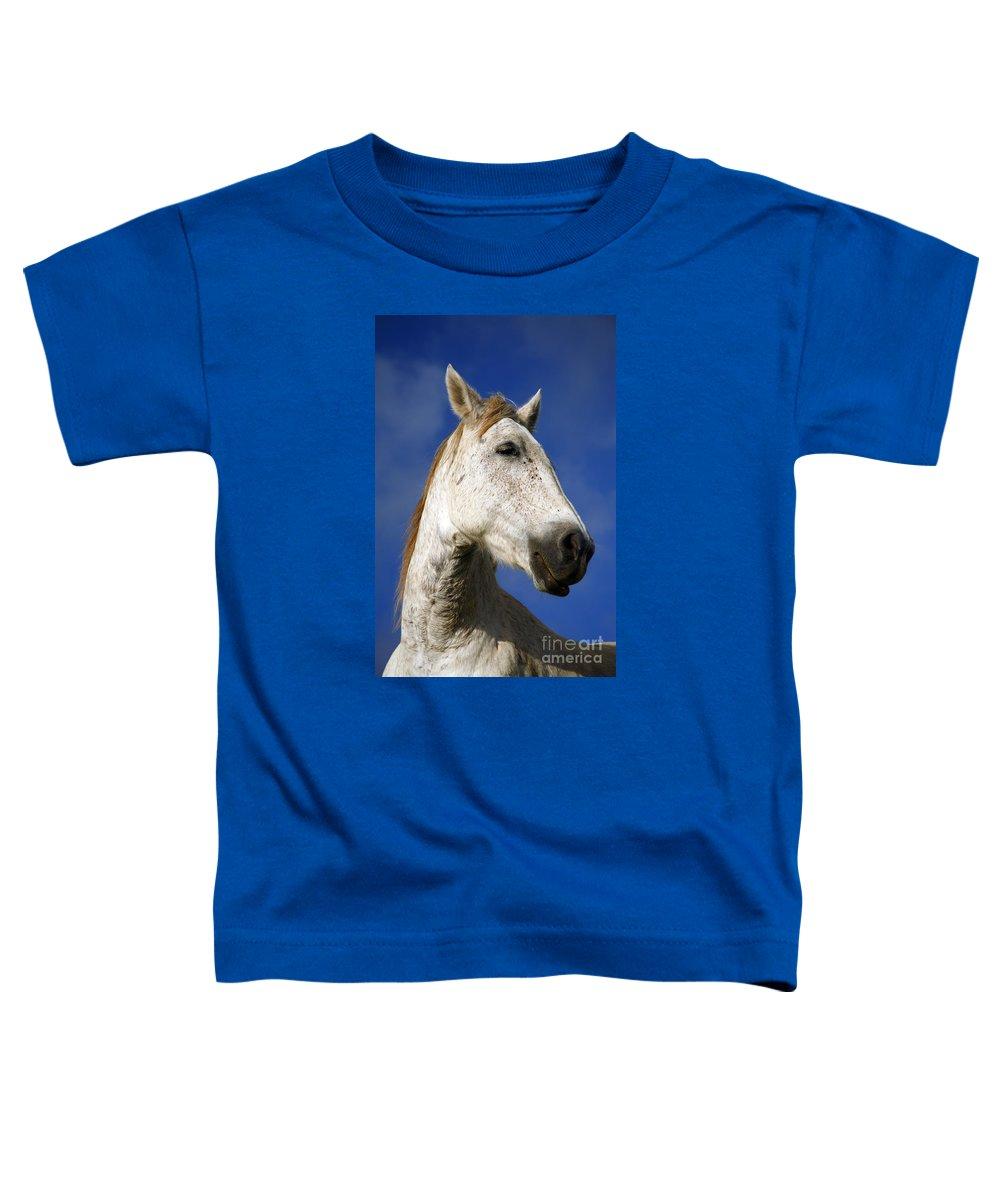 Animals Toddler T-Shirt featuring the photograph Horse Portrait by Gaspar Avila