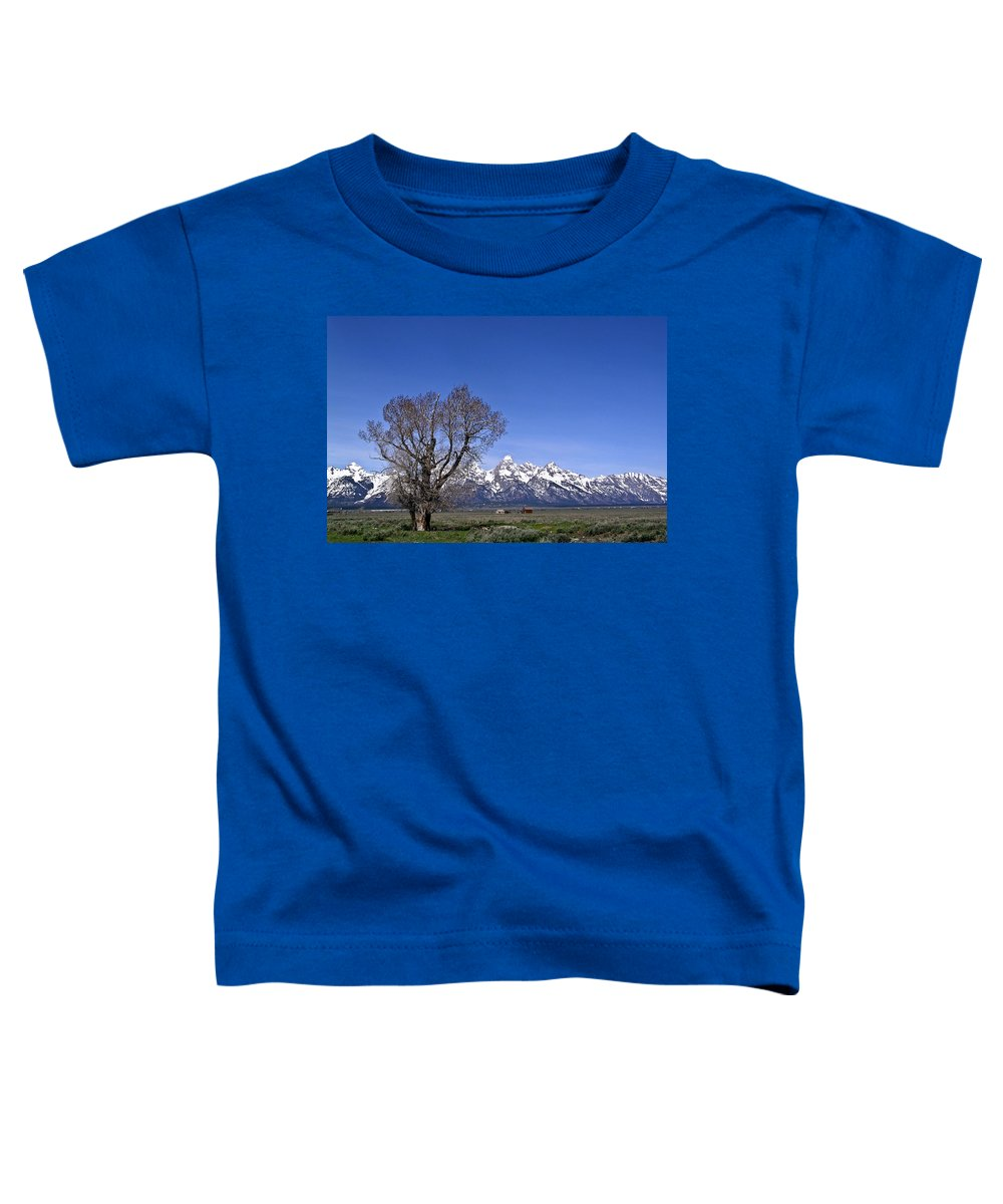 Tree Toddler T-Shirt featuring the photograph Lone Tree At Tetons by Douglas Barnett