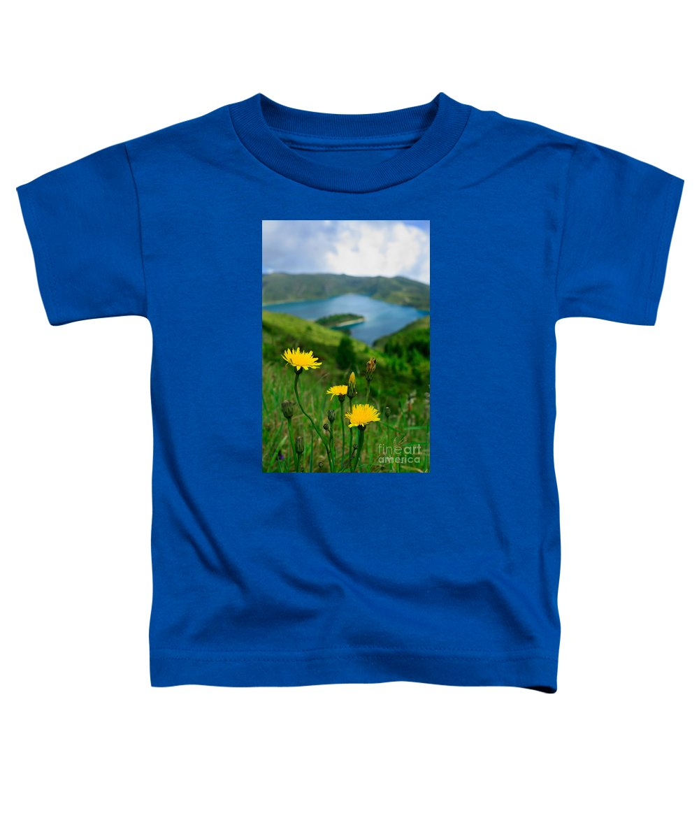 Caldera Toddler T-Shirt featuring the photograph Springtime In Fogo Crater by Gaspar Avila
