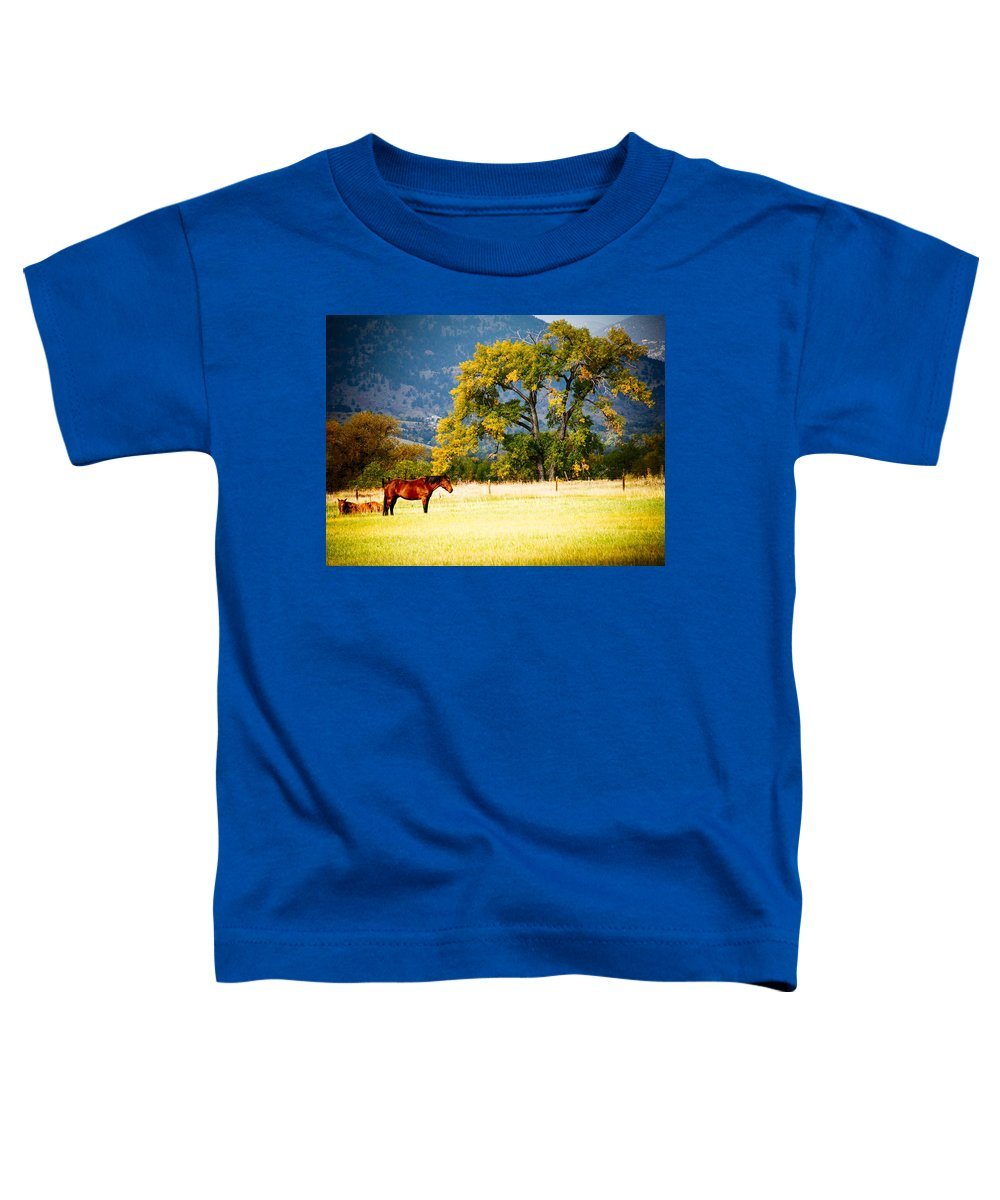 Animal Toddler T-Shirt featuring the photograph Two Horses by Marilyn Hunt