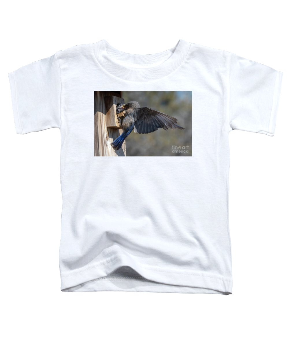 Bluebird Toddler T-Shirt featuring the photograph Beak To Beak by Mike Dawson