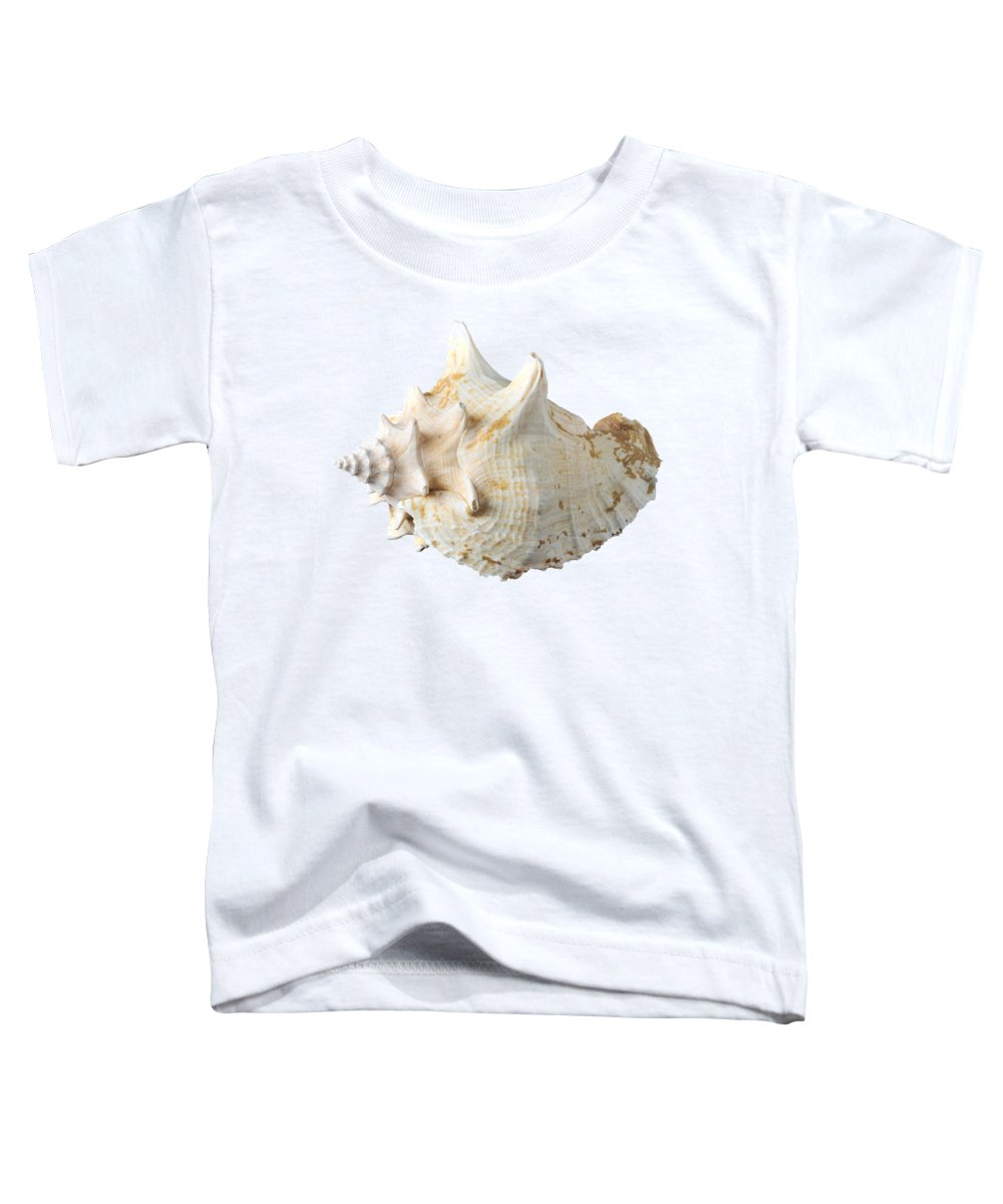 Shell Toddler T-Shirt featuring the photograph Sea Shell 5 by George Atsametakis
