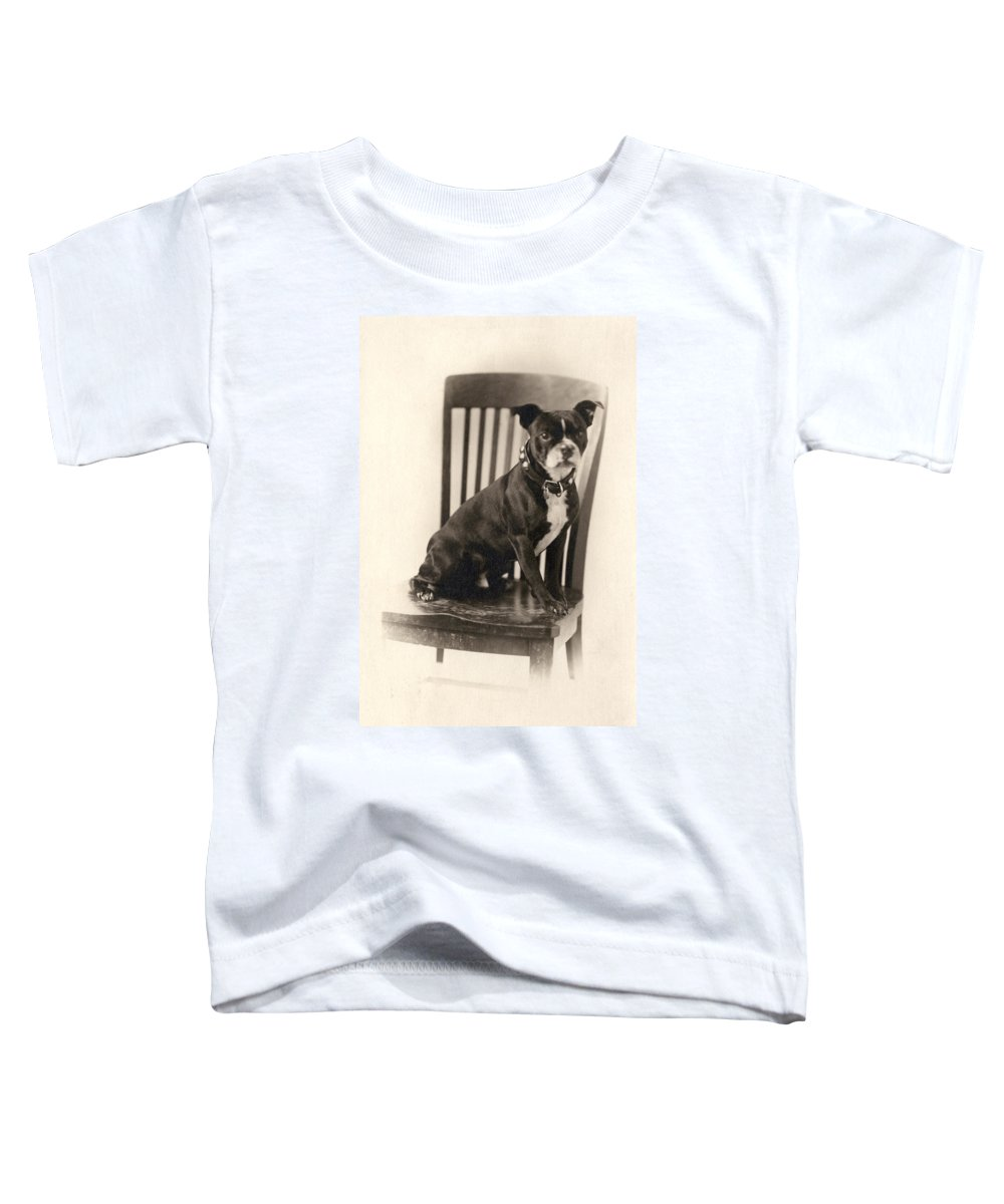 Breed Of Dog Toddler T-Shirts