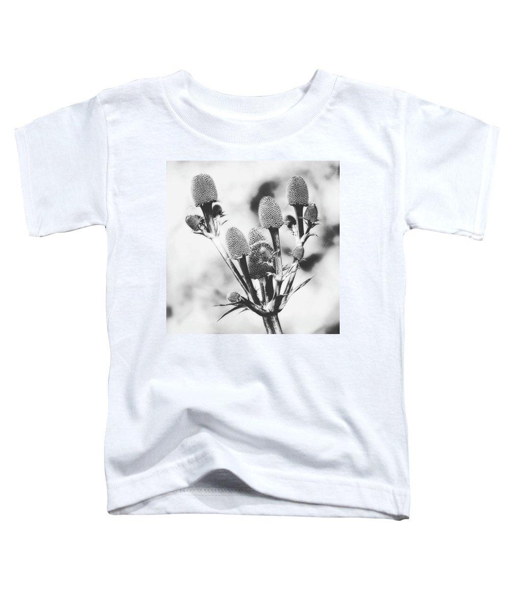 Beautiful Toddler T-Shirts