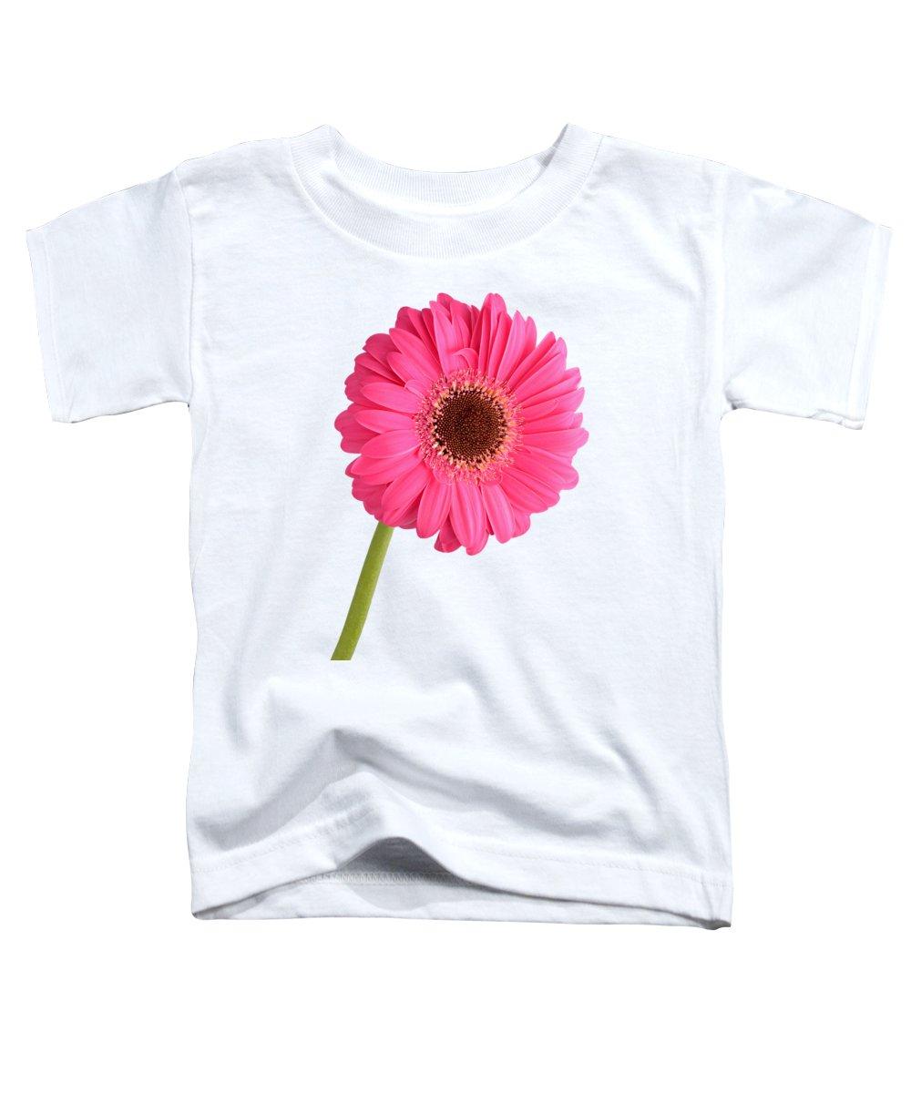 Gerbera Toddler T-Shirts
