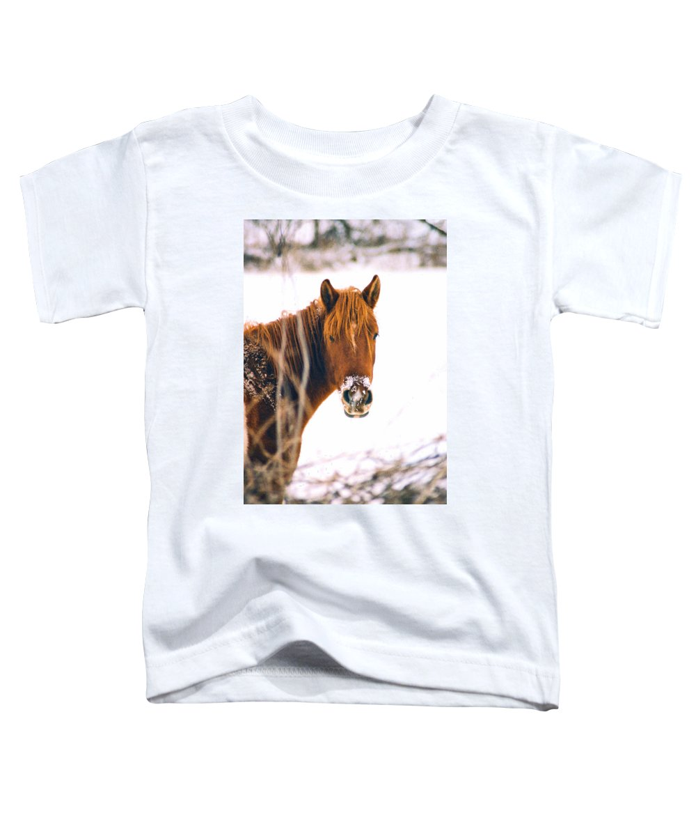 Horse Toddler T-Shirt featuring the photograph Horse In Winter by Steve Karol