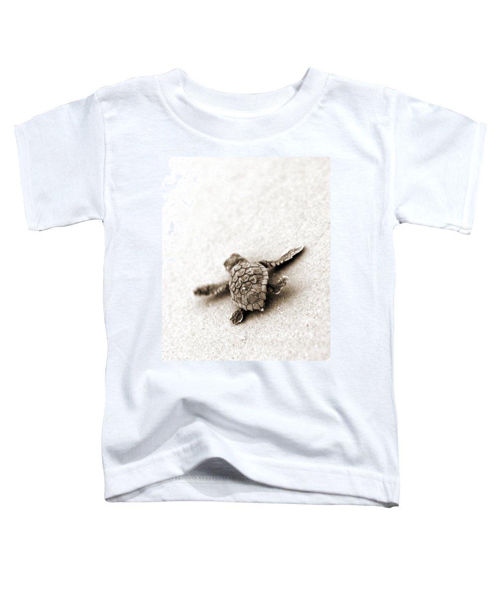 Loggerhead Turtle! Hilton Head Island Toddler T-Shirt featuring the photograph Loggerhead by Michael Stothard