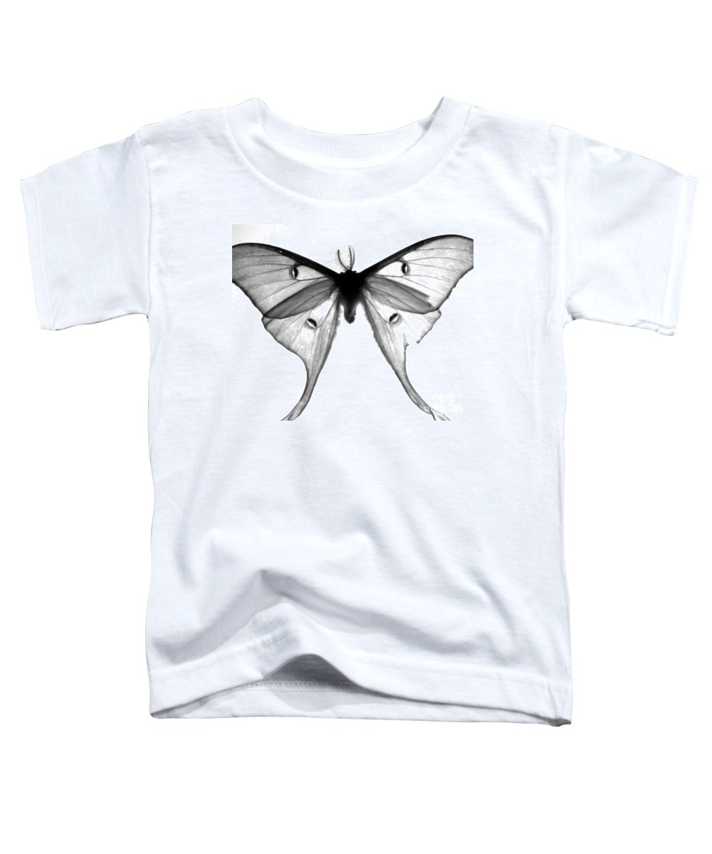 Moth Toddler T-Shirt featuring the photograph Moth by Amanda Barcon