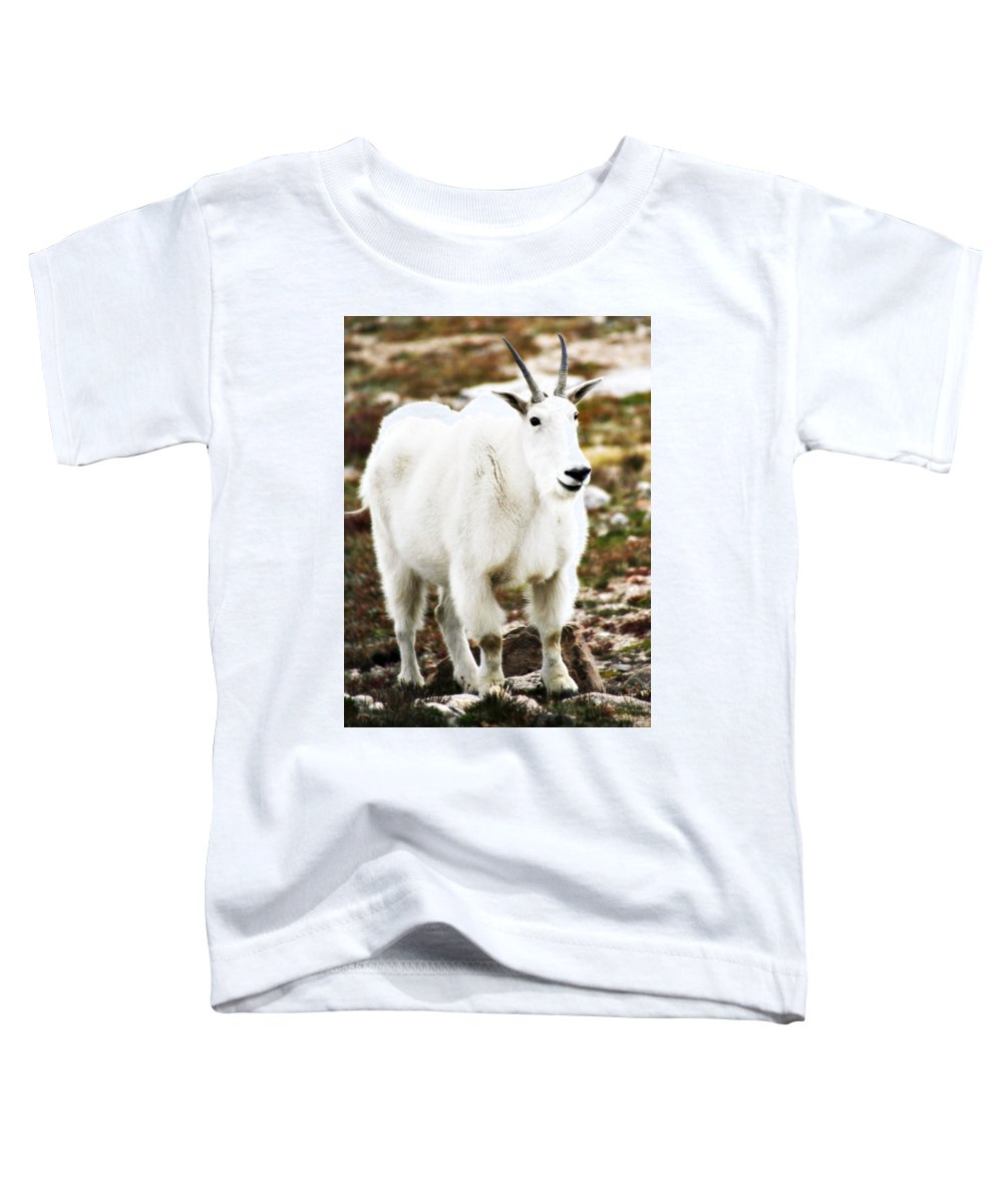 Animal Toddler T-Shirt featuring the photograph Mountain Goat by Marilyn Hunt