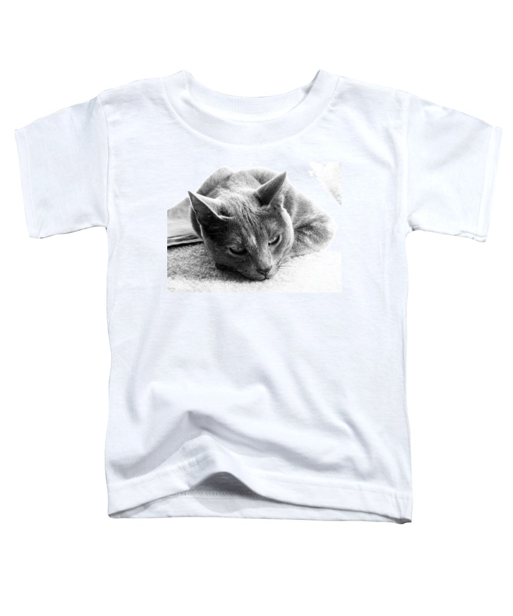 Cats Toddler T-Shirt featuring the photograph Resting by Amanda Barcon