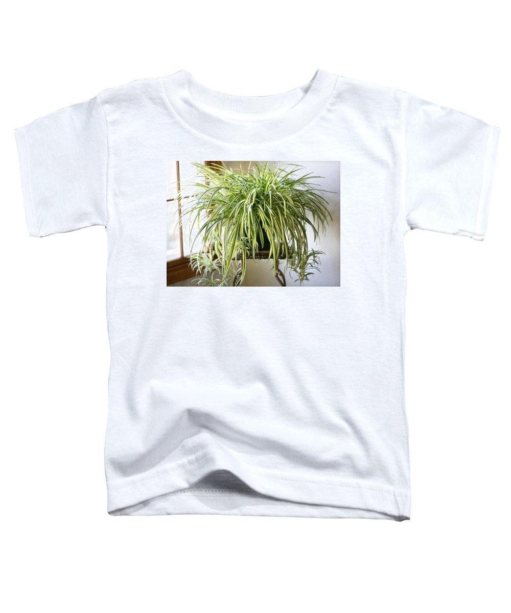 Spider Plant Toddler T-Shirt featuring the photograph Spider Plant by Marilyn Hunt