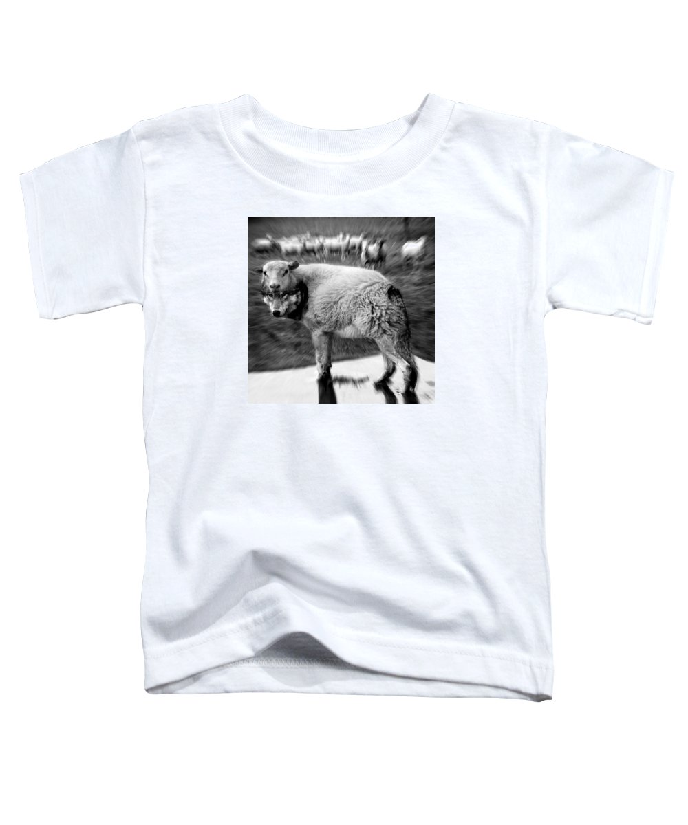 Flock Of Sheep Toddler T-Shirt featuring the digital art The Flock Is Safe grayscale by Marian Voicu
