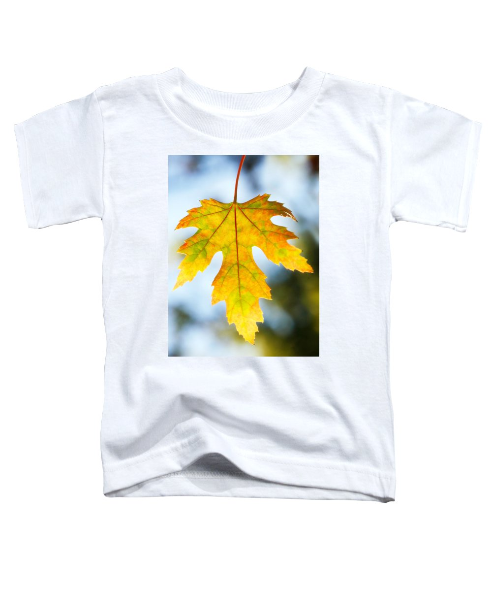 Maple Toddler T-Shirt featuring the photograph The Maple Leaf by Marilyn Hunt