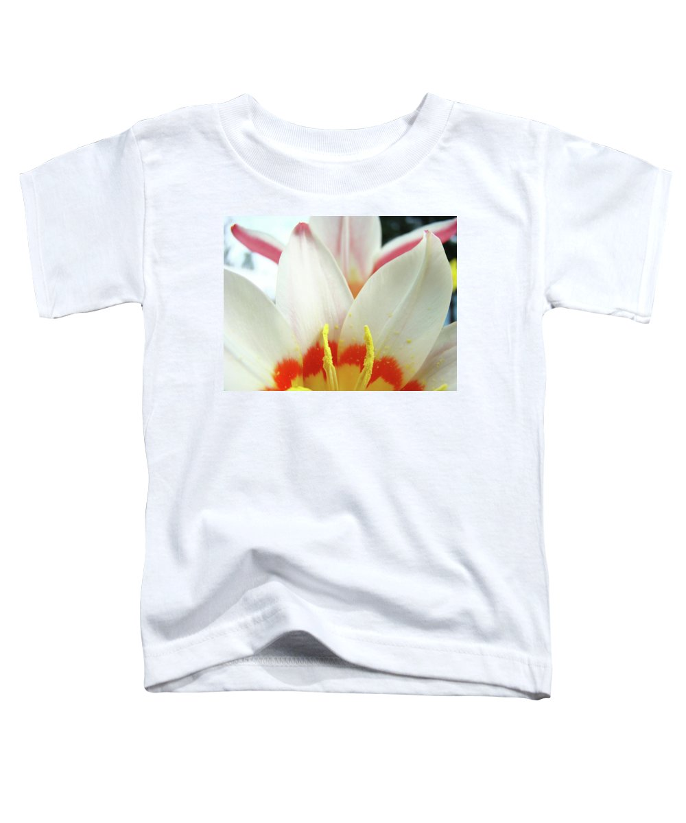 �tulips Artwork� Toddler T-Shirt featuring the photograph Tulip Flowers Art Prints 4 Spring White Tulip Flower Macro Floral Art Nature by Baslee Troutman