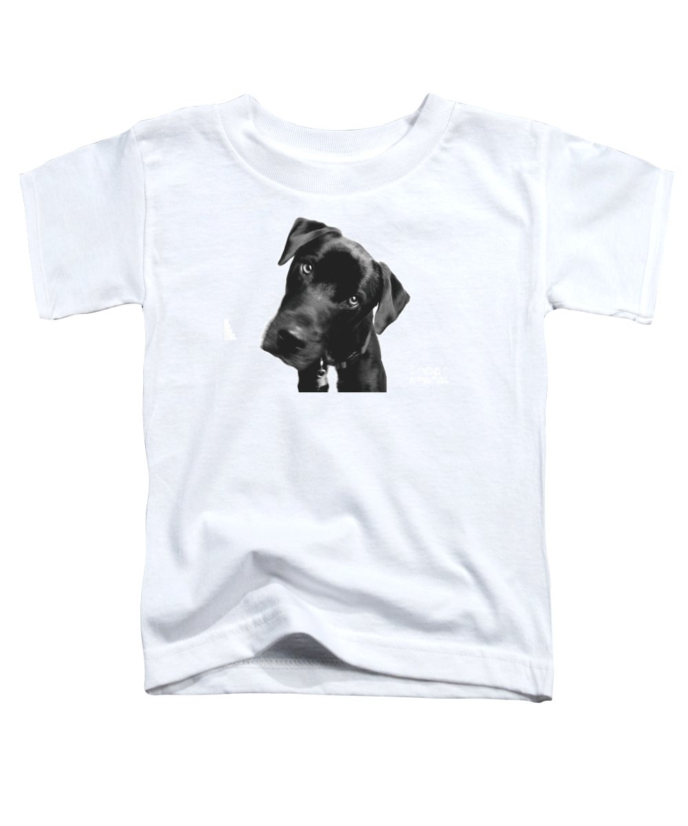 Labrador Toddler T-Shirt featuring the photograph What by Amanda Barcon