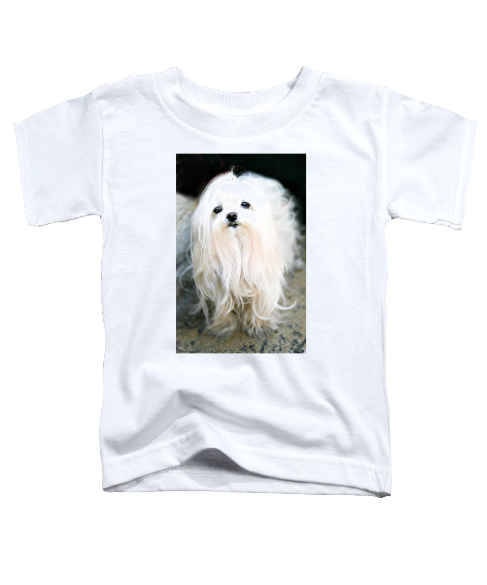 Small Toddler T-Shirt featuring the photograph White Fluff by Marilyn Hunt