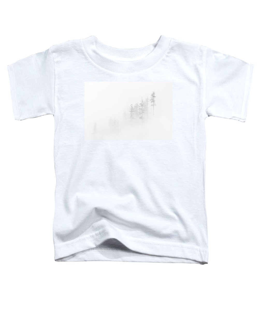 Winter Toddler T-Shirt featuring the photograph Winter Veil by Mike Dawson