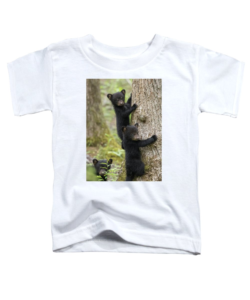 Bear Toddler T-Shirt featuring the photograph Three Little Bears by Everet Regal