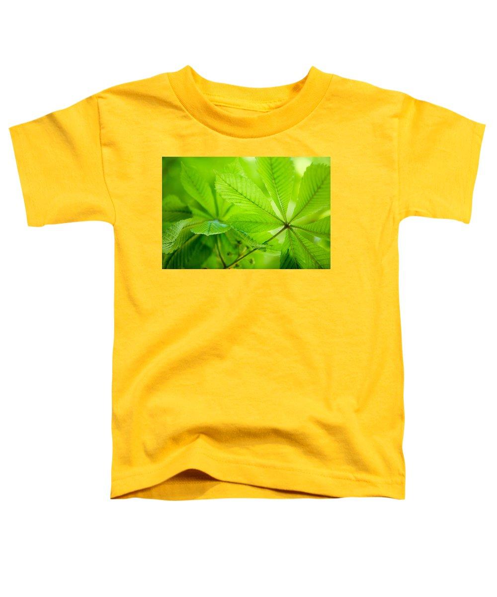 Soft Focus Toddler T-Shirts