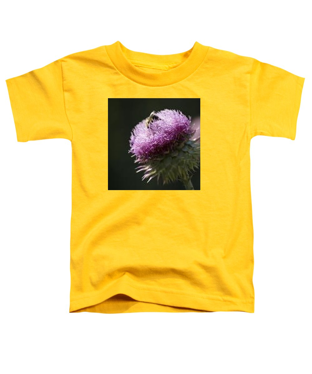Bee Toddler T-Shirt featuring the photograph Bee On Thistle by Nancy Ayanna Wyatt