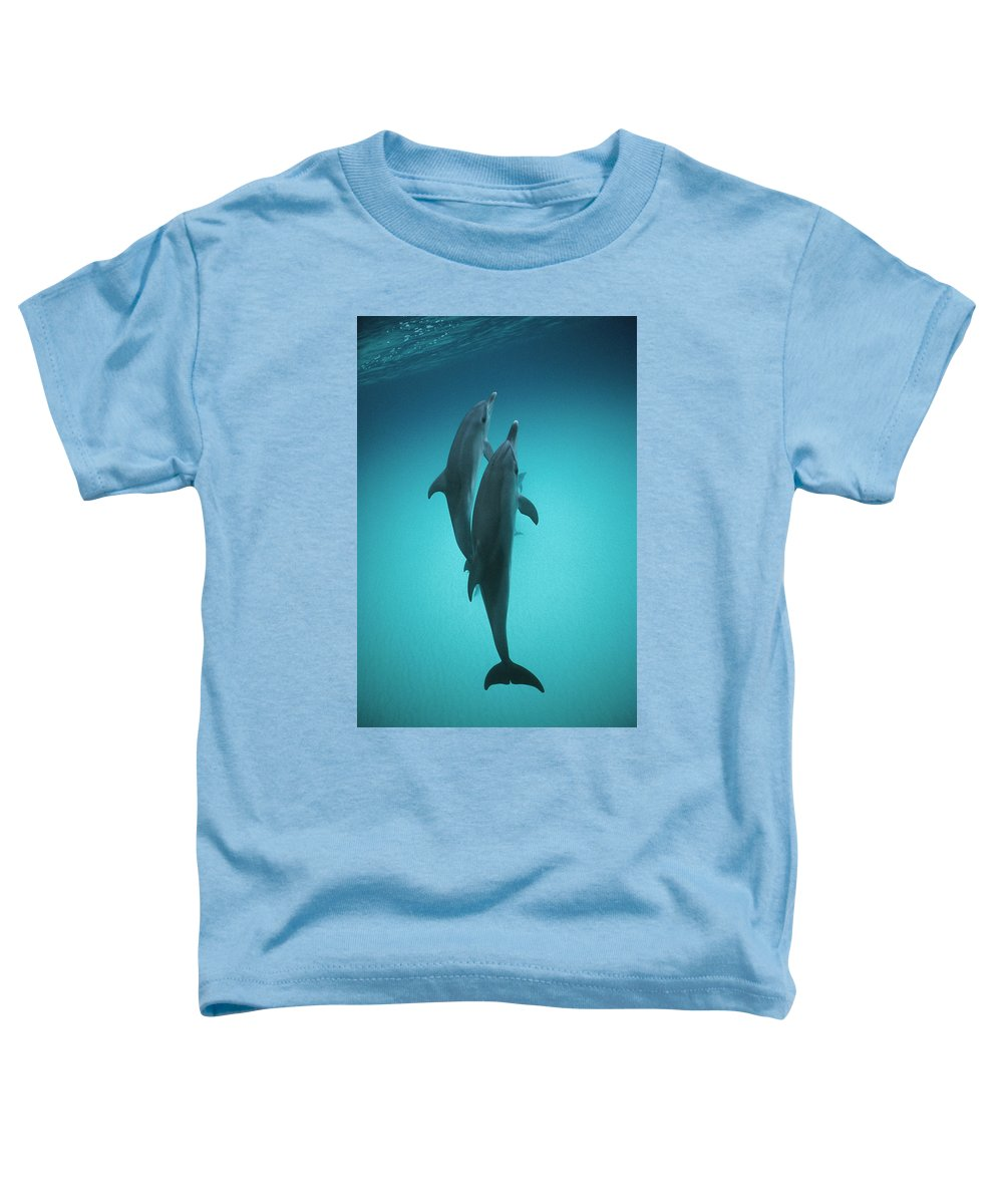 Feb0514 Toddler T-Shirt featuring the photograph Atlantic Spotted Dolphin Pair Bahamas by Flip Nicklin