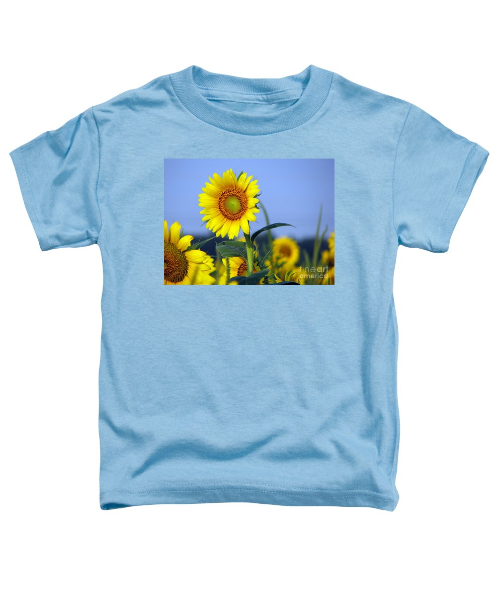 Sunflower Toddler T-Shirt featuring the photograph Getting To The Sun by Amanda Barcon
