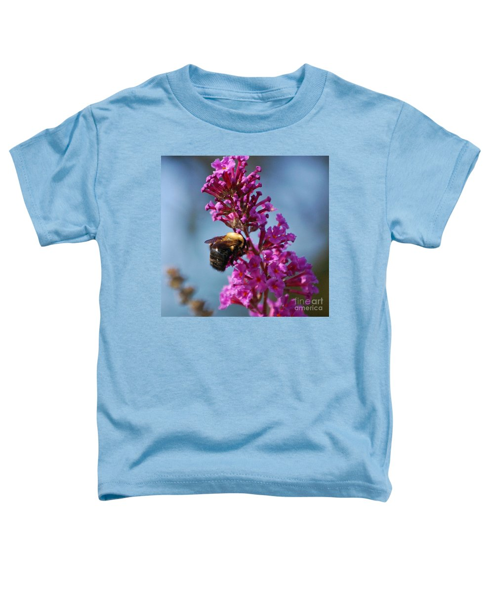 Bee Toddler T-Shirt featuring the photograph Buzzed by Debbi Granruth