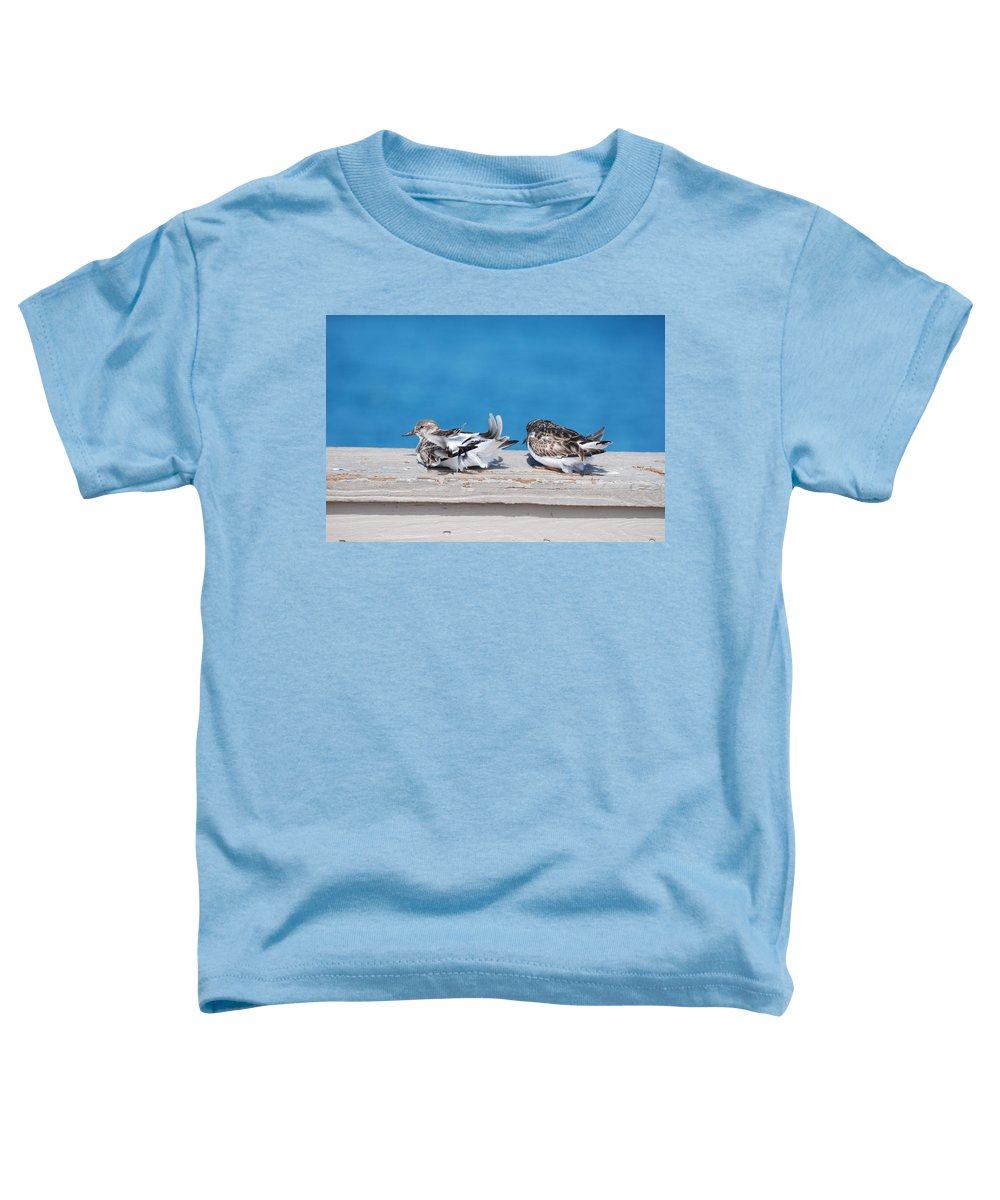 Bird Toddler T-Shirt featuring the photograph Cold Birds by Rob Hans
