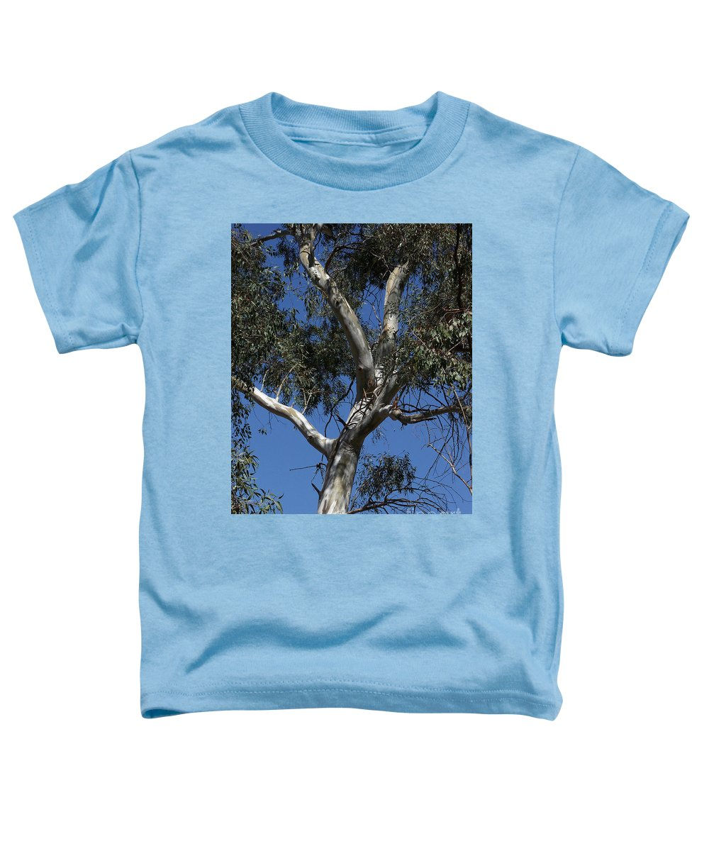 Trees Toddler T-Shirt featuring the photograph Eucalyptus by Kathy McClure
