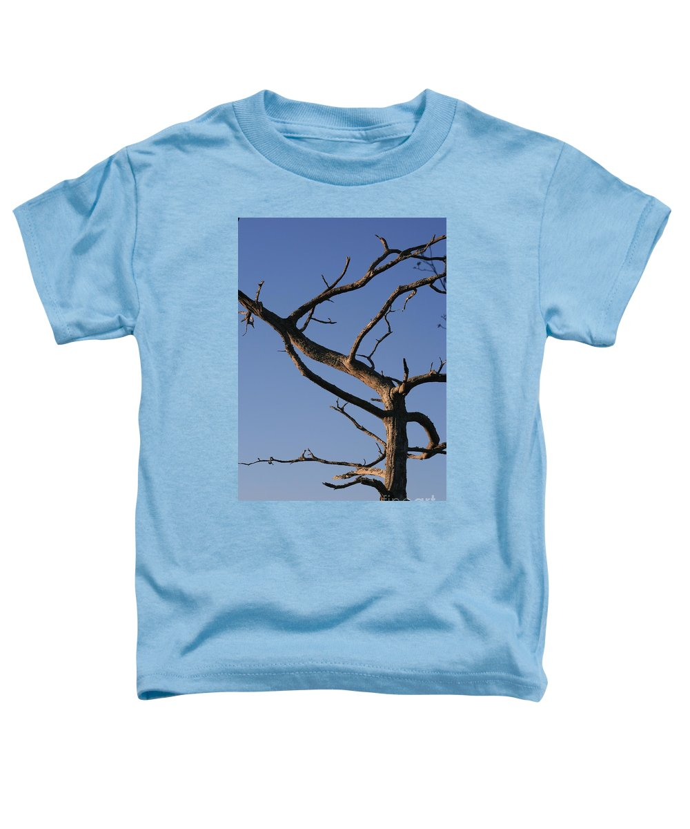 Tree Toddler T-Shirt featuring the photograph Gnarly Tree by Nadine Rippelmeyer