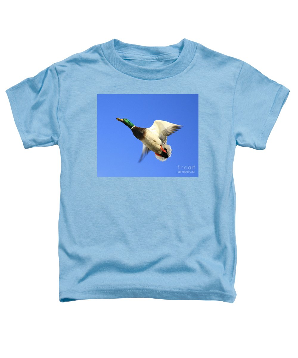 Duck Toddler T-Shirt featuring the photograph Heads Up by Robert Pearson