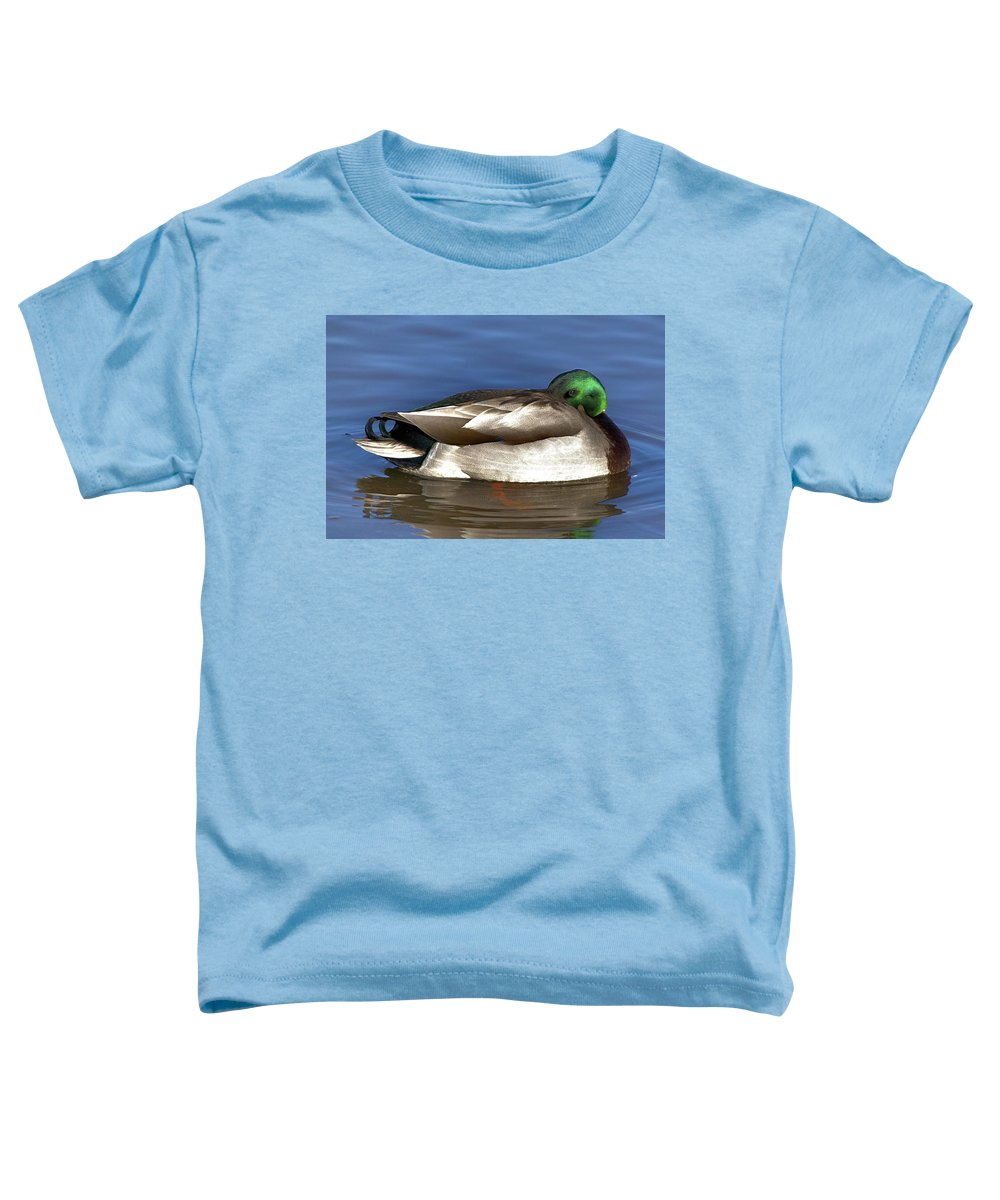 Duck Toddler T-Shirt featuring the photograph Peek A Boo by Robert Pearson