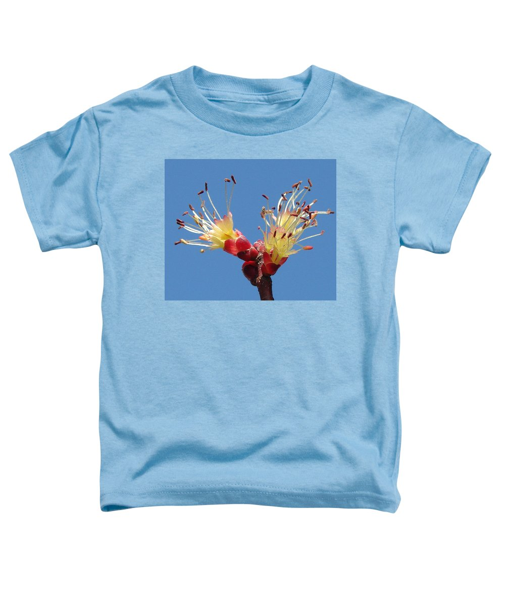 Toddler T-Shirt featuring the photograph Re-awakening by Luciana Seymour